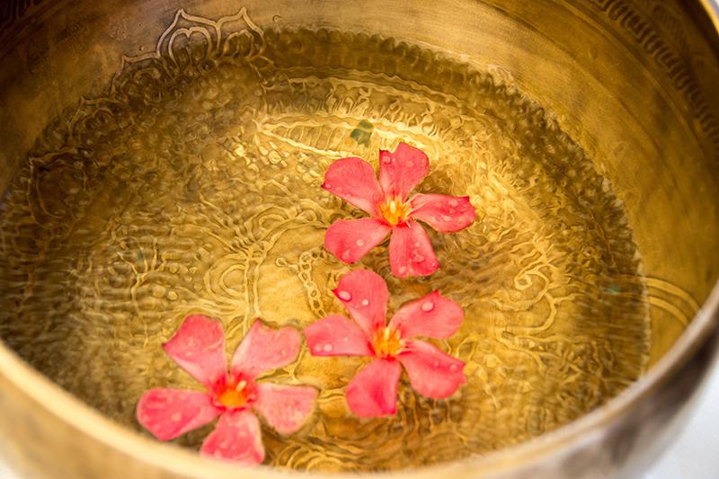 foto fiori in acqua